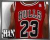 [H]Chi►Bulls J23*Red