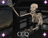 [CCQ]CH:Floor Skully
