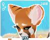 Ⓕ Aria | Ears