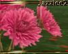 J2 Spring Flowers Pink 2