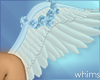 Angel Baby Wings Ani