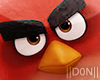 ANGRY BIRDS + ACTIONS