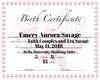 Custom Birth Certificate
