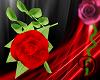 [D] Red Handheld Rose