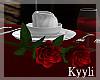 K: 2 Stem Rose