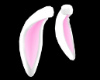 Pink White Bunny Ears