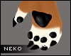 [HIME] Coco Paws