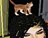 Head Cat F