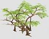 (ED1)Trees-12