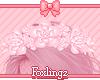 🎀Saisho flowers
