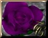 TC~ Single Purple Rose