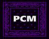 PCM^ BACK BAT ACTION 2