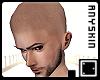 ` Anyskin Shaved