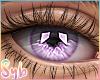 Dream Lilac x