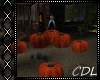!C* H Pumpkin Dance