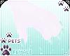 [Pets] Jura | claws