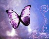 [CNL]mariposa