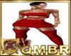 QMBR M FULL - 2020 LBDR