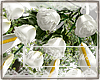 Rus: Mila bouquet