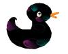 Emo's Ducky
