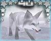 White Fox Pet