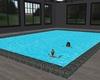 Shiney tiled ground pool