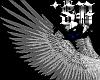 *SA Fad Wht Angel Wings