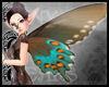 TTT Butterfly Wings~Teal