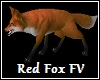 Red Fox FV