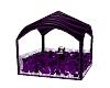 Purple playboy Ballpit