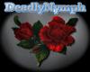 *DN* Rainbow Rose