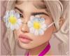 !© Flower Vision White
