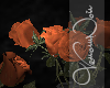 VN Ruins Roses Jar
