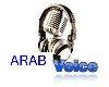 voice arab obama