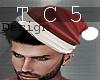 sexy santa beanie