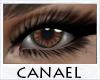 [CNL]Eye unisex sorrel 1