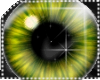 !LC™ iEnerz Eyes M-Yello