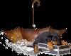 [ML]puppy & umbrella