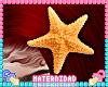 M. Ariel Starfish Head