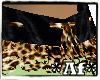 Af Leopard Lace Collar