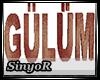 GULUM RADYO