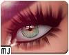 Zell New Lashes