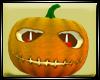 Dp Pumpkin