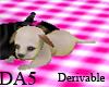(A) Pet Puppy