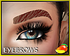 Brows 3 Brown