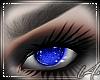 [L4] Ocean Eye