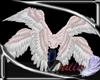 Anyskin Wings