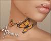 $ Butterflies/Farfalle