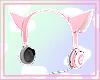 Kitty Headset