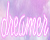 PD Neon Dreamer Sign